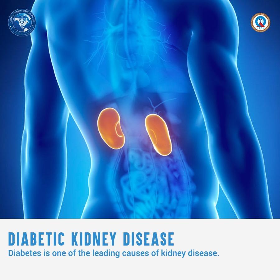 24.March7DKidney disease